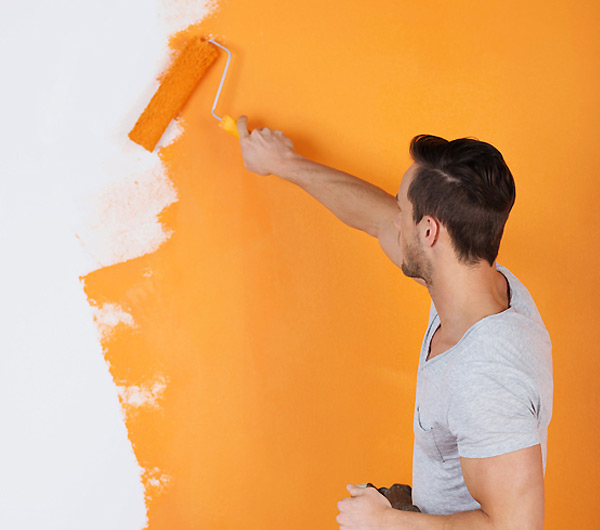 The services provided by the house painter in Gurgaon